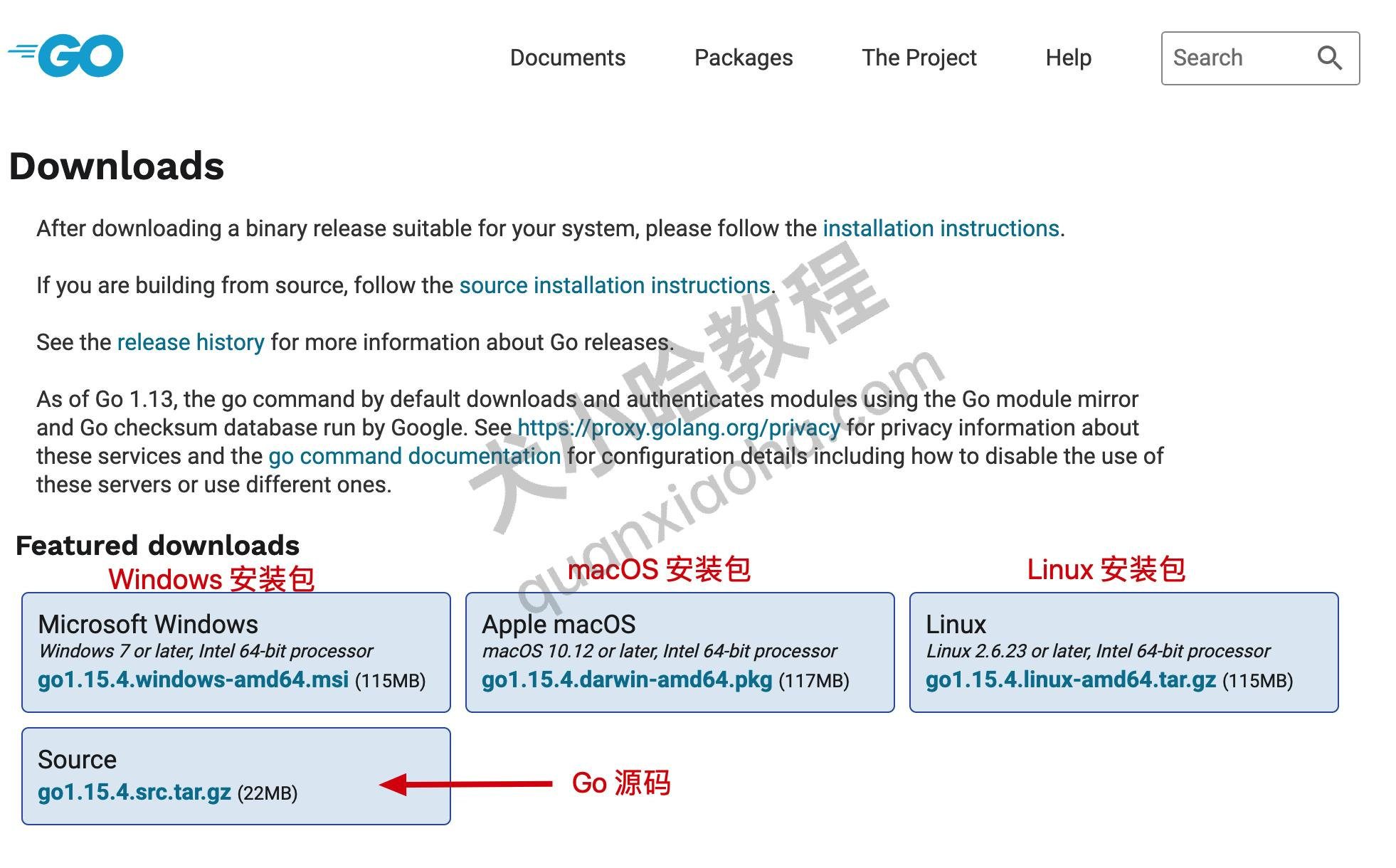 开始下载Go语言安装包
