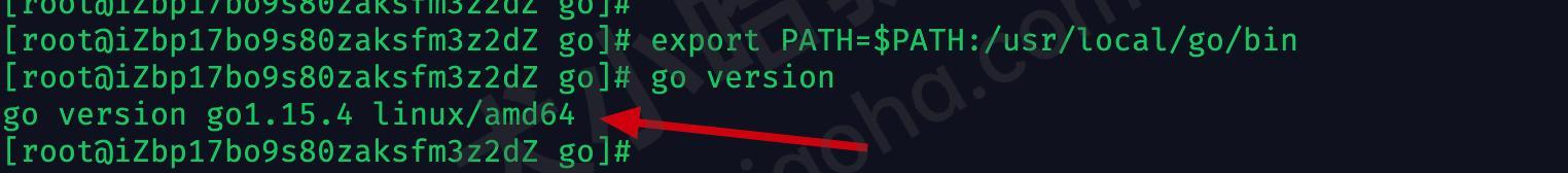linux验证go是否安装成功