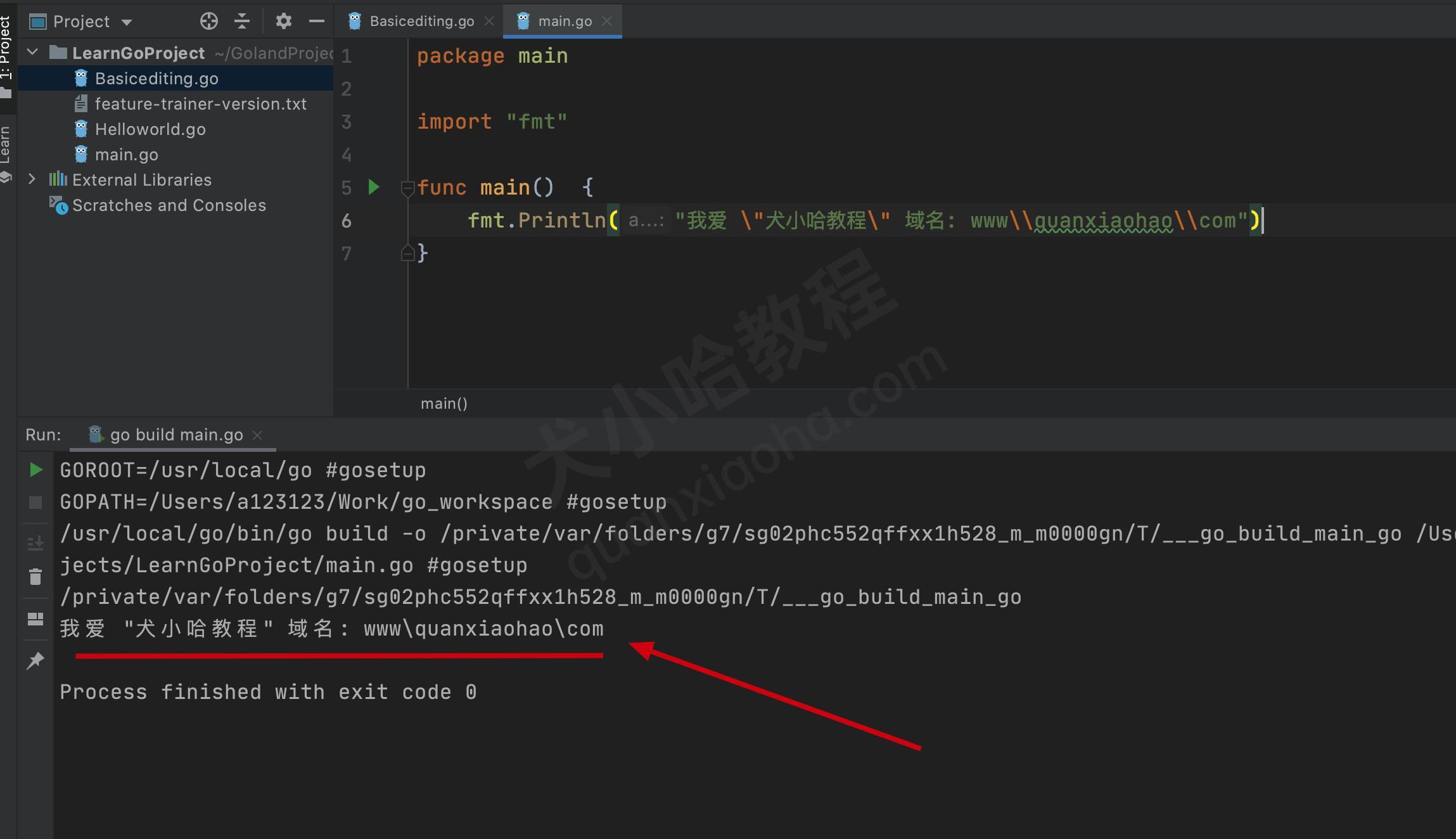 go语言打印字符串示例代码