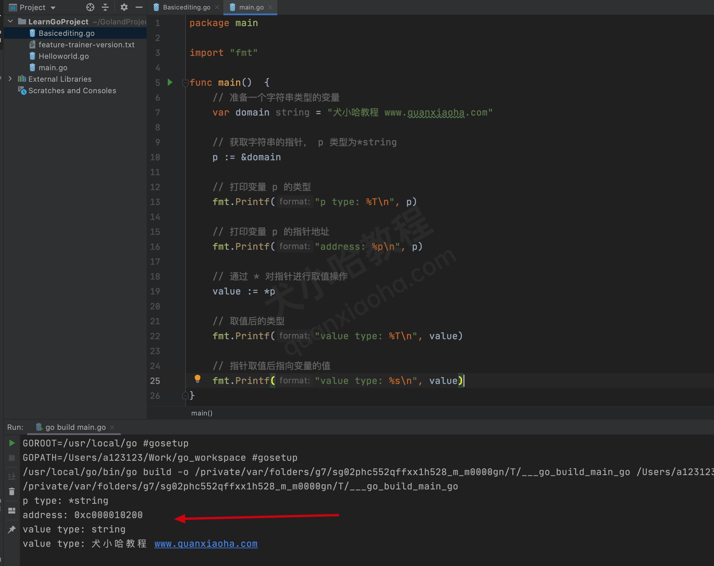go语言指针取值代码示例