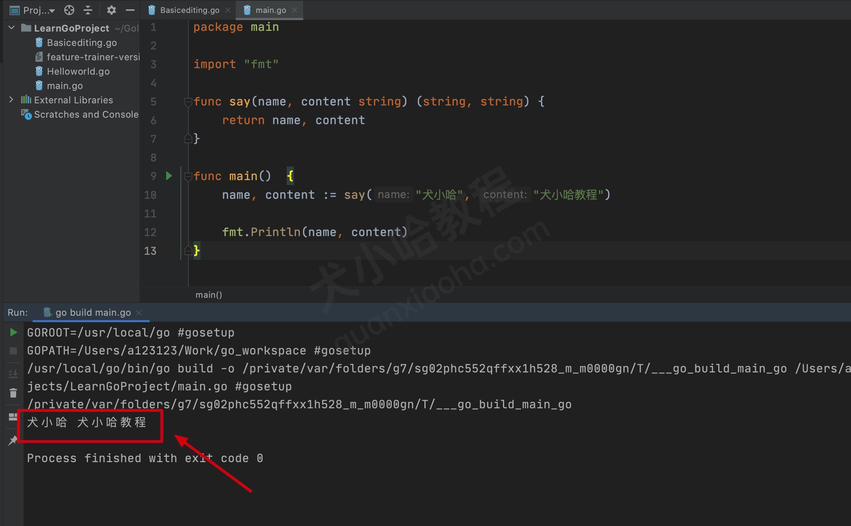 Go 语言函数定义_声明_调用(超详细)