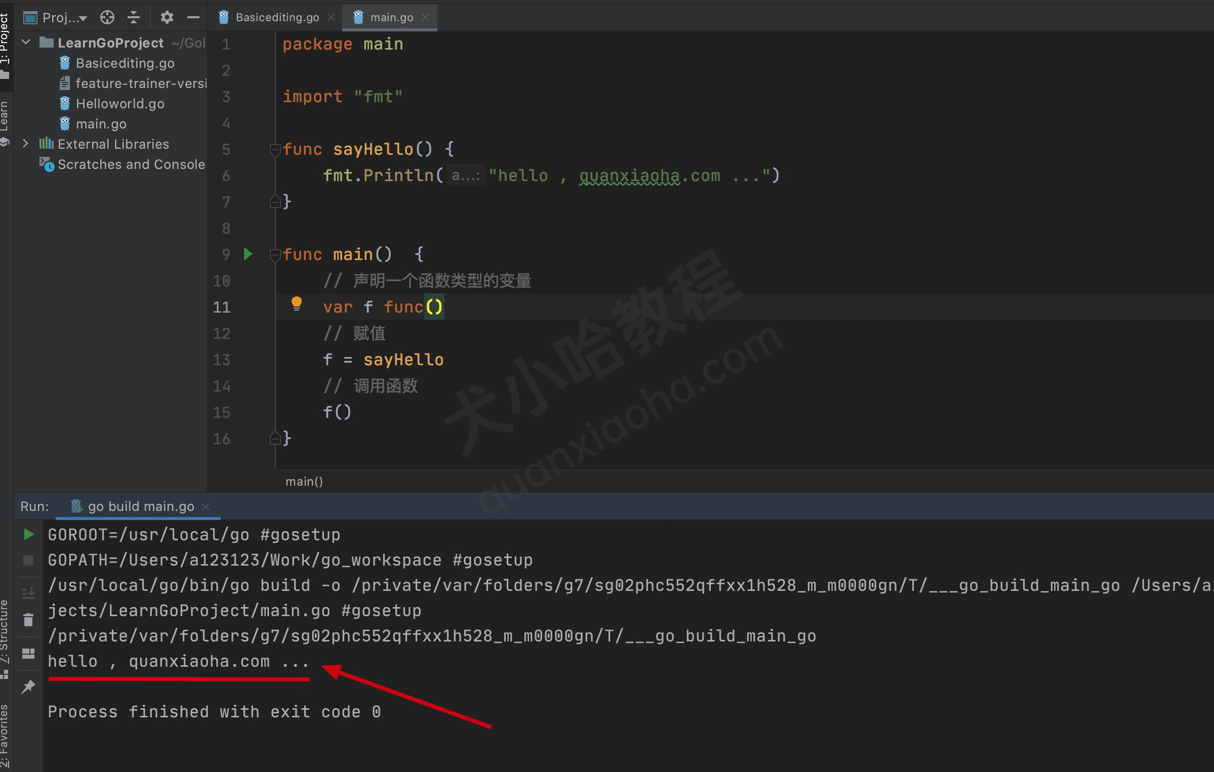 go语言函数变量示例
